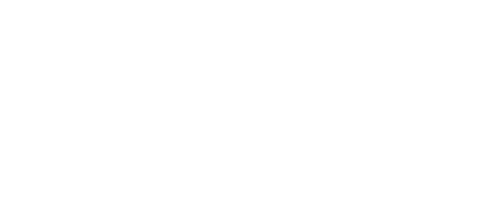 fmsis-logo